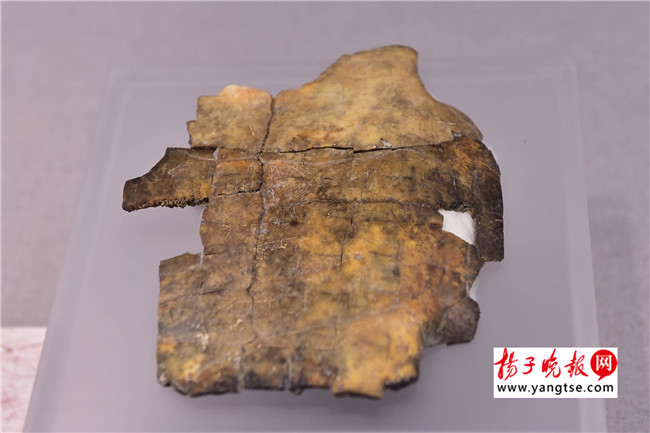 这件龟甲上记载了一桩婚事 刘浏/摄   上世纪初,人们在中药店一种被称为龙骨的药材上,发现了文字痕迹。后经过研究,被确认为商代的文字,也就是甲骨文。所谓甲骨,就是指龟腹甲与牛肩胛骨。商朝人将甲骨放在火上烘烤,根据裂开的纹路,来预测事情的结果,再把所占卜的事情刻在上面。在《殷墟至宝》中,两种载体的甲骨文展出了十几件之多。   比如安阳小屯村出土的殷墟二期的龟腹甲上,记录了3000年前的一桩婚事。占卜者想娶一个名叫井过的人的女儿,但拿不准对方是否愿意。专家介绍,商代贵族家庭之间就存在相互联姻的现象