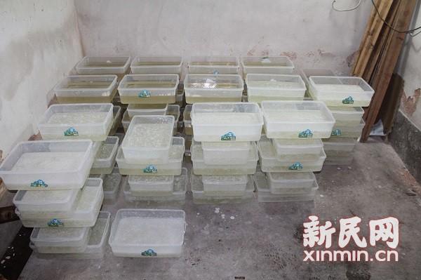 2.4吨冰毒!上海警方建国后最大制贩毒案侦破实录