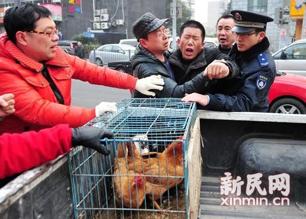 沪今起整治违法活禽摊 现场没收50余只活禽
