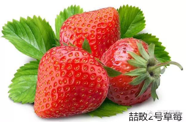 儿时的草莓送上门!送出10份作白色情人节礼物可好?