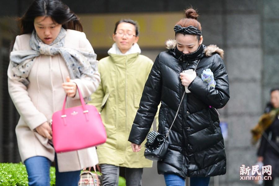 倒春寒?申城今最低气温跌破10℃
