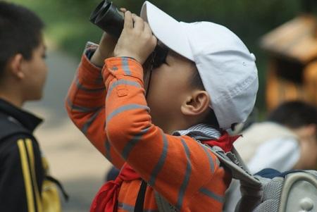 上海有22处最佳观鸟点!我们一张图告诉你在哪里