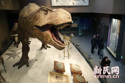 """自然博物馆新馆开馆之际:让科普成为""""创新发现之旅"""""""