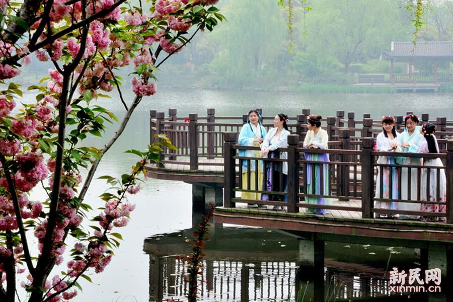 身穿汉服的女孩们在春意盎然的河畔踏青游春。新民晚报通讯员 杨建正 摄