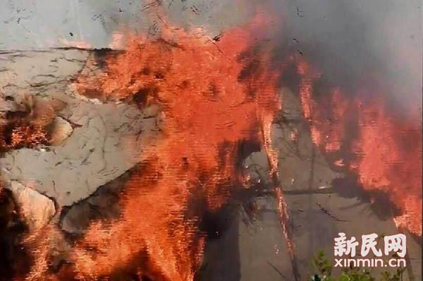 金山吕巷养鸡棚火灾 万只雏鸡险遭难