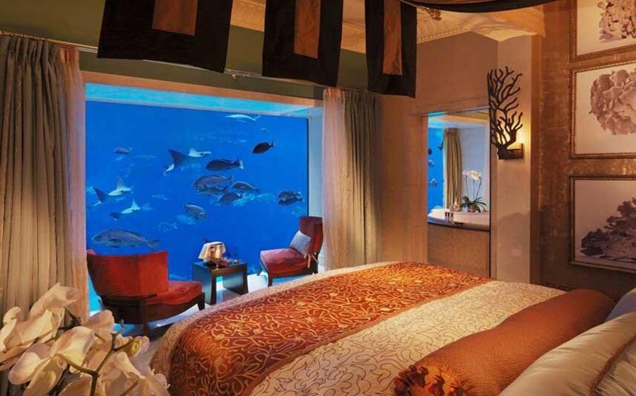 世界首家水下夜总会:窗外可见海底各种生物