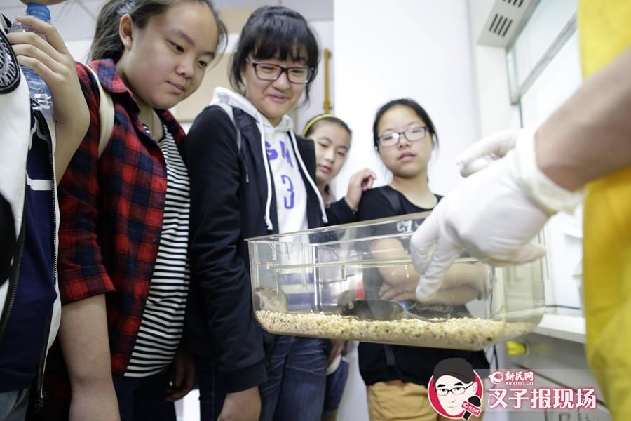 实验室开放日摸大鼠、看细菌 高精尖也能接地气