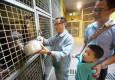市民走进上海动物园亲身体验:如何科学给动物喂食