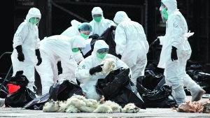 上海市报告1例感染H7N9病毒确诊病例