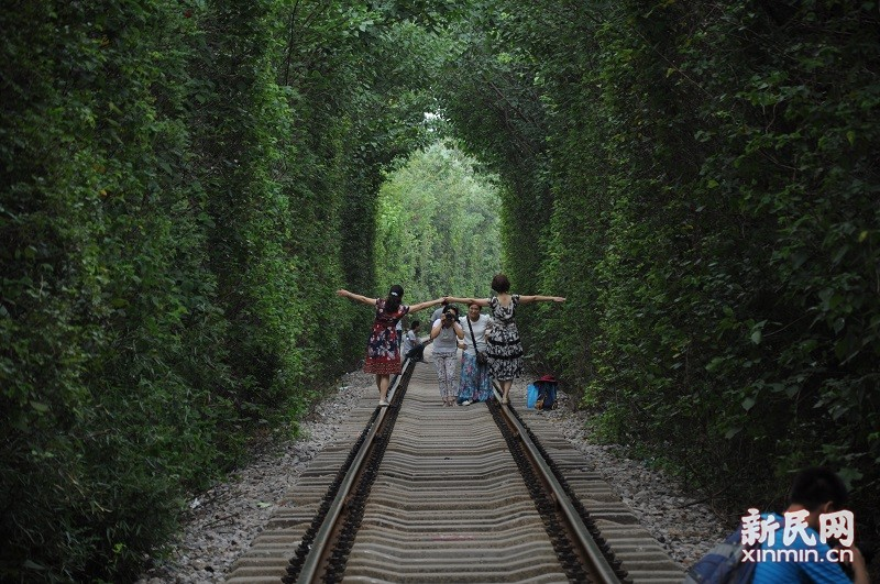 """南京""""爱情隧道"""":浑然天成的浪漫奇景"""