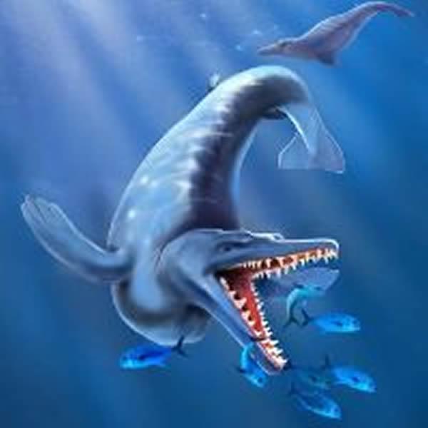 南极半岛化石显示远古鲸鱼的进化速度比我们想象要快得多   在南极半岛一处化石蕴藏丰富的地方出产的一块长达24英寸(60厘米)鲸鱼颚部骨骼化石显示古代鲸鱼的进化速度比我们想象的要快得多。这类鲸鱼整体可长达20英尺(6米),它们拥有满口的牙齿,以大型企鹅、鲨鱼、大骨鱼为主要食物,这些生物与颚骨化石在同一层位产出。   这类早期鲸鱼生活于4900万年前的始新世,来自瑞典自然历史博物馆的古生物学家Thomas M?