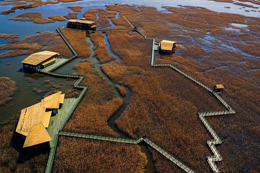 鸟瞰上海崇明:生态之岛 童话仙境
