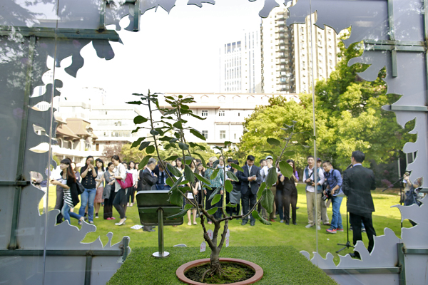 """上海科学会堂迎来那棵著名的""""牛顿苹果树"""""""