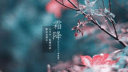 今晨上海局部有雾白天多云 下周起逐渐降温