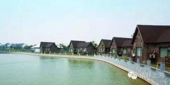 上海第一个对外开放的郊野公园