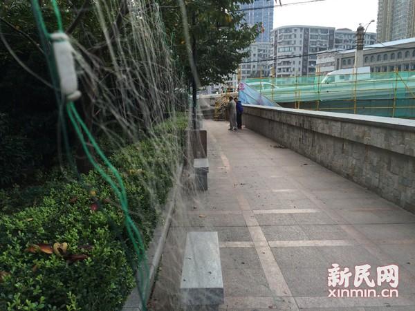 苏州河违规捕捞猖獗 捕捞者:两区交界没人管