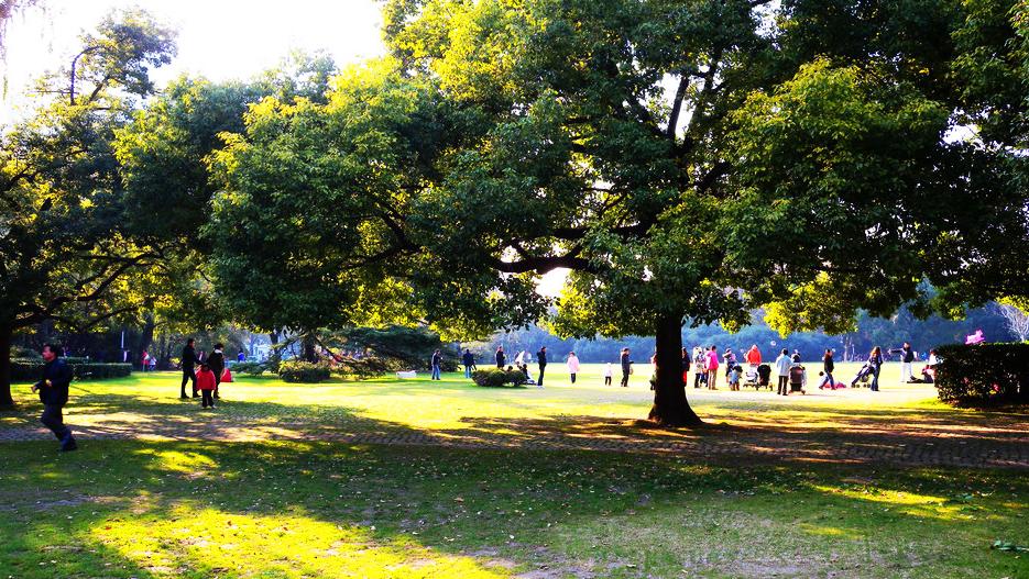 中山公园将打造开放式绿地 建横穿长宁路地下通道