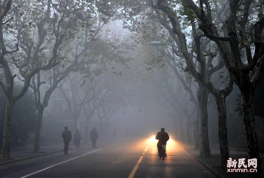 由于湿度大、风力小,昨(11月29日)夜今晨申城局部出现大雾天气,街头能见度一时低于500米。上海中心气象台2时03分发布大雾橙色预警信号。8时许,大雾才渐渐散去。图为今晨6时左右,申城街头大雾弥漫,政化路上的雾景如梦似幻。新民晚报通讯员 杨建正 摄