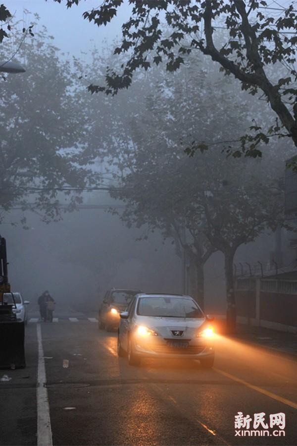 今晨6时左右,申城街头大雾弥漫,车辆纷纷开启大光灯照明。新民晚报通讯员 杨建正 摄