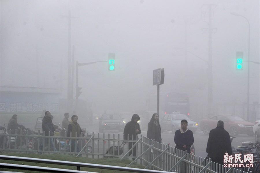 今日早间的浓雾,能见度一时低于500米。新民晚报通讯员 杨建正 摄