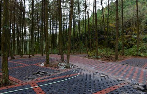 仙人岭景点建起生态停车场
