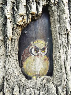 而是一位美术启蒙老师正在创作树洞画,它让冬季光秃秃的大树成了街边图片