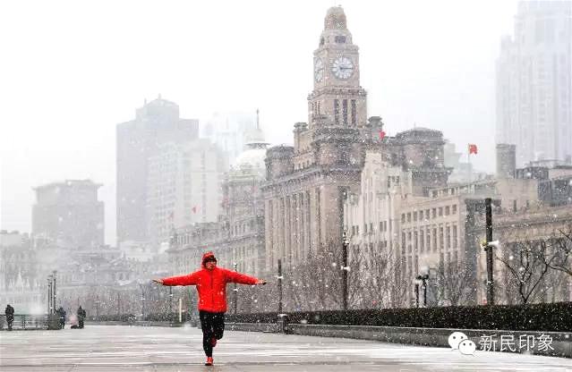 全上海雪景最美的地方!美到心碎!