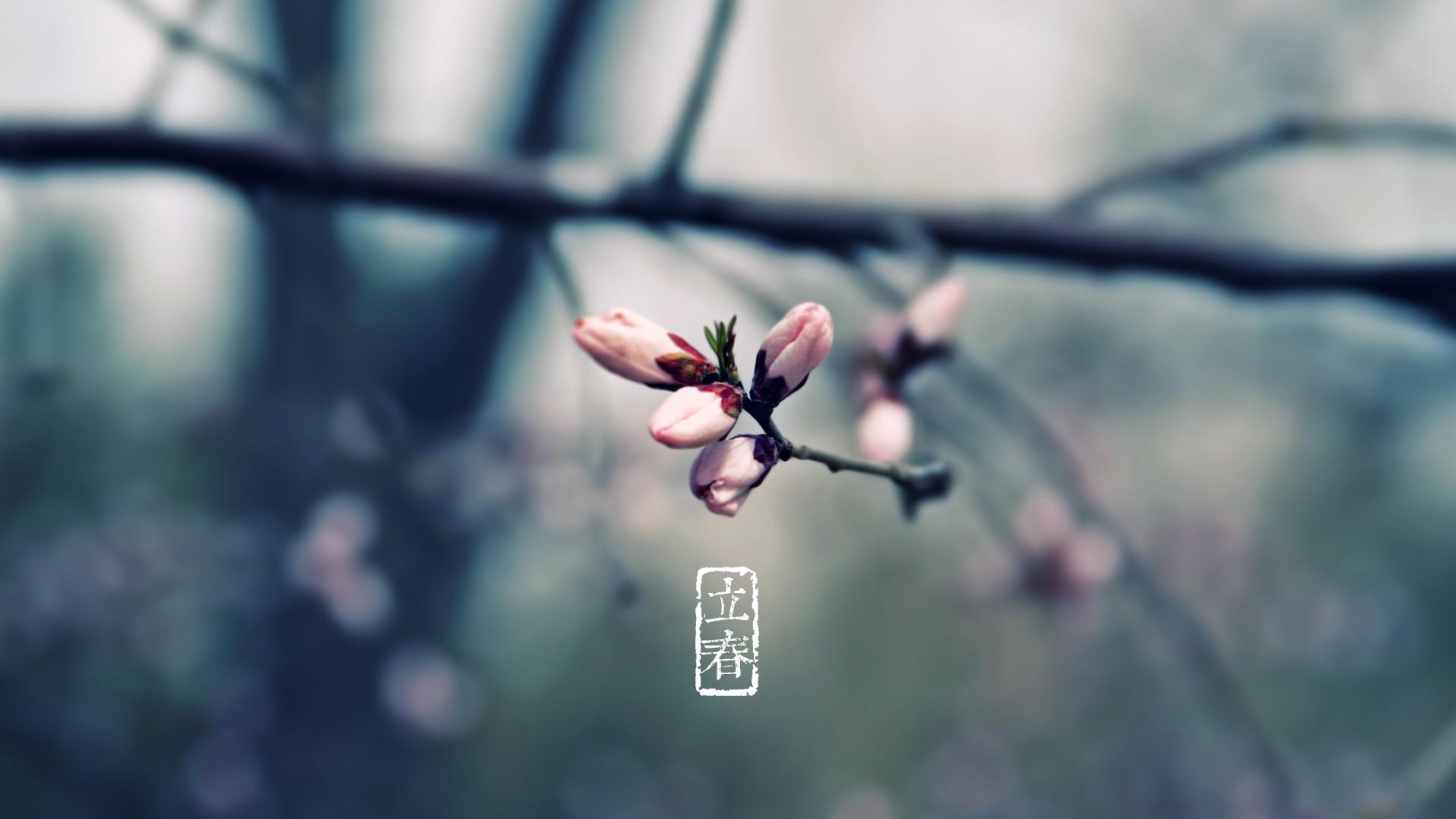 今日立春阴有小雨 年初一起气温回暖