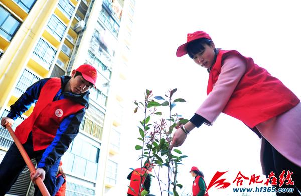参加义务植树的志愿者和群众个个干劲十足-植树节 社区新婚夫妇植下