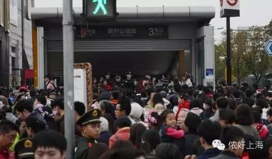 """听说上海一年一度的""""封村节""""来了!"""