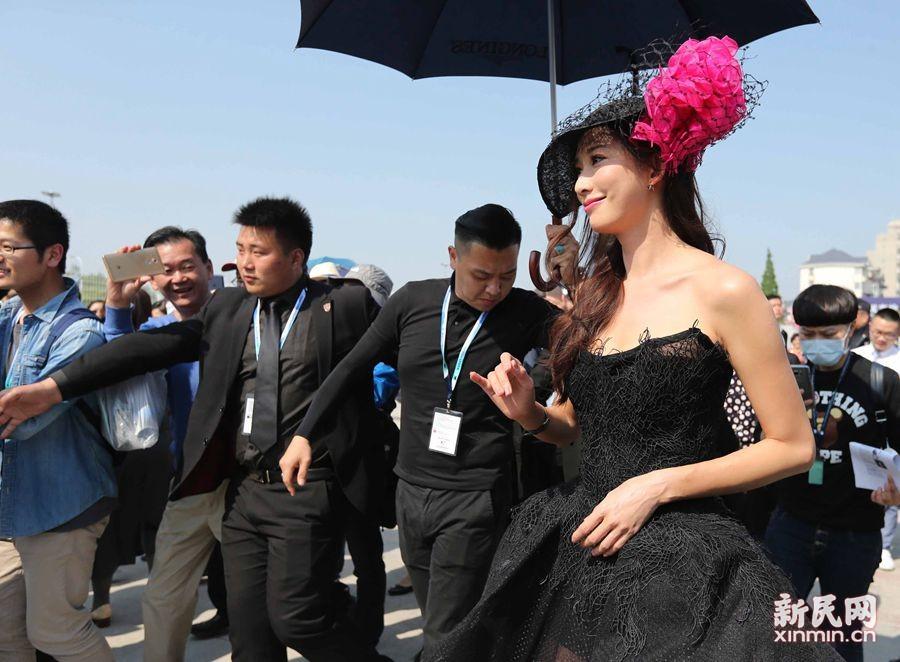 上海环球马术赛上的礼帽秀 一定有你熟悉的身影!