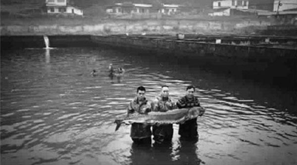"""长江第一湾有个""""2012""""生命基地"""
