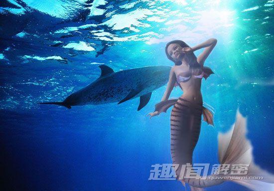 探訪海底神秘美人魚圖片
