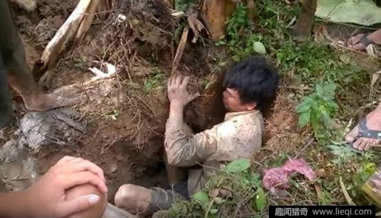 一群人围在香蕉树下拼命挖洞