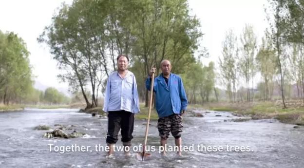 河北两位残疾老人荒滩植树15年感动世界