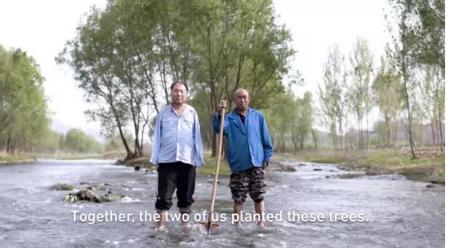 两位残疾老人荒滩植树十五年 感动世界