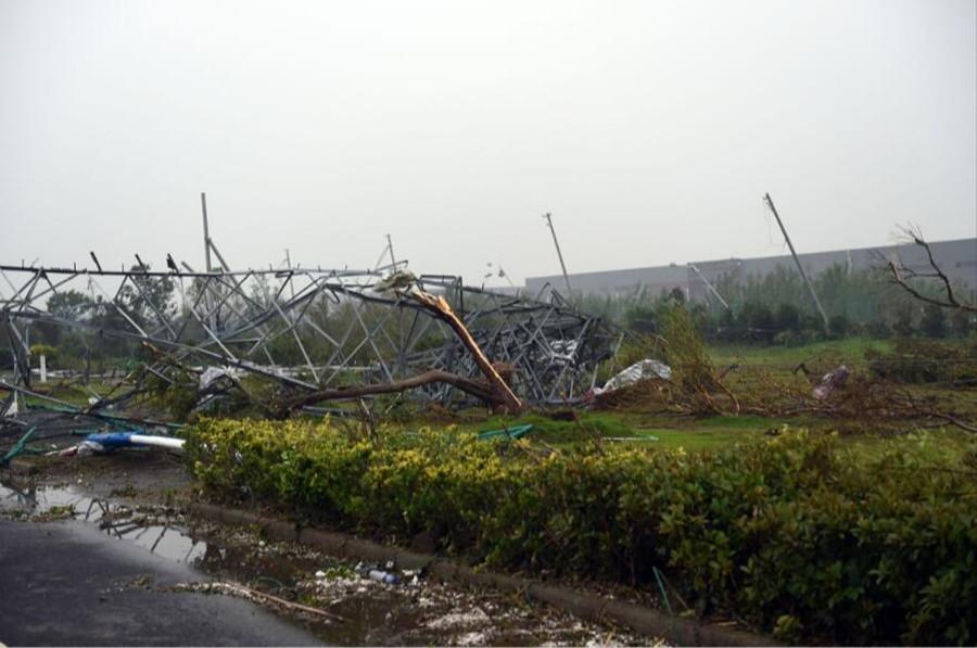 6月23日,江苏省阜宁县陈良镇农田里的电力设施被龙卷风吹倒。新华社发