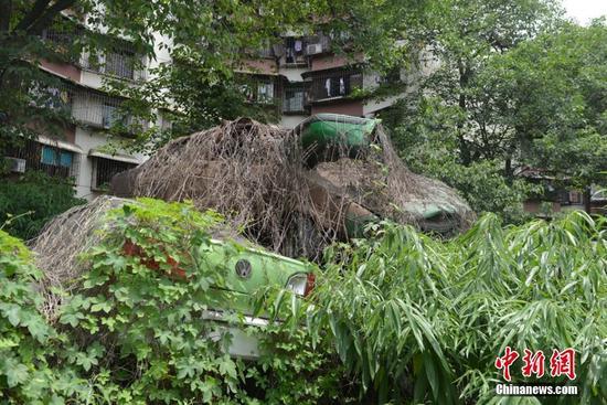 """成都""""汽车坟场"""" 居民楼下堆积如山"""