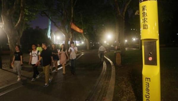 夜间游园安全、照明设施维护等成为市民关注焦点