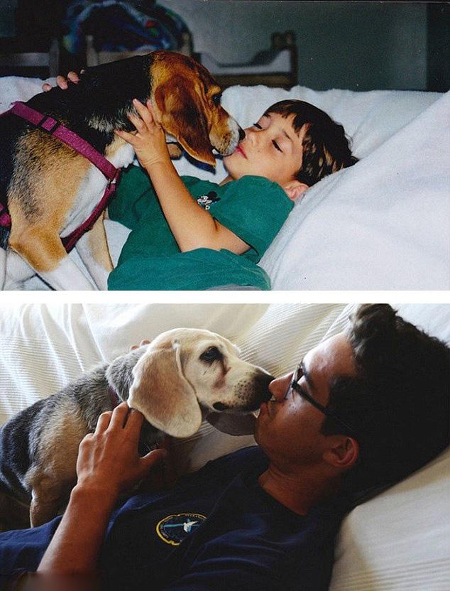 美网友分享第一张和最后一张宠物照悼念宠物