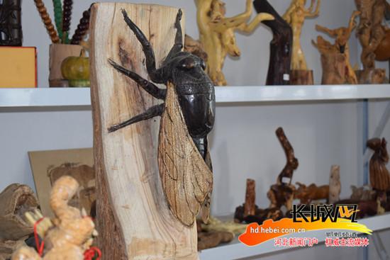 霍立军的作品《蝉》。   为了潜心研究,霍立军小学毕业后就开始全身心地投入到木雕世界中。自家院里的枣树、榆树折掉的枝杈,河边的苇竹根,坚果的壳和核,只要是农家院里能接触到的东西,都是他的雕刻原材。一块块其貌不扬的树根,经他之手,都会变成一件件活灵活现的木雕工艺品。   随着生活的稳定,霍立军开办了自己的工作室,潜心搞起木雕工作。立足农村广阔的生活,他的作品多涉及蝉、花生、豆角、南瓜、簸箕等农民生产生活中常见的物品。   雕刻不容易,轻重缓急,全凭拿捏,容不得半点马虎,不仅需要细心,更需要耐心。说起木雕