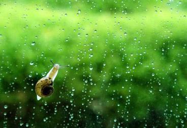 夏季如何阻止湿气进入体内