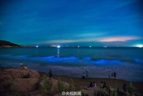 """海滩现绝美发光""""蓝海"""" 海岸线如璀璨星空图片"""
