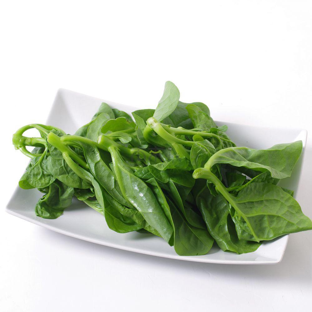 木耳菜帮助身体排毒 木耳菜的营养价值有哪些