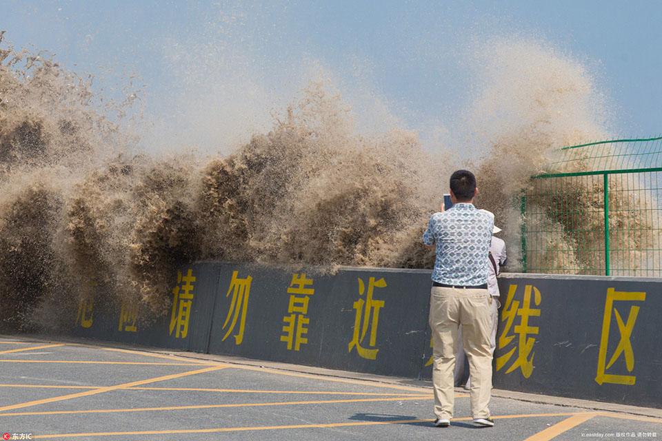 七月半钱江大潮汛观潮客淡定拍照