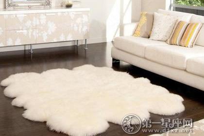 客厅地毯风水地毯颜色也能旺财