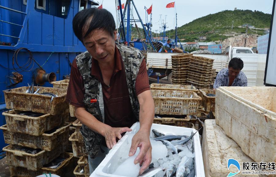 高清:开海了 烟台渔船出海归来一大波海鲜上岸