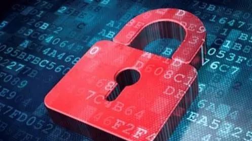 专家视角:网络安全应加强刑法保护