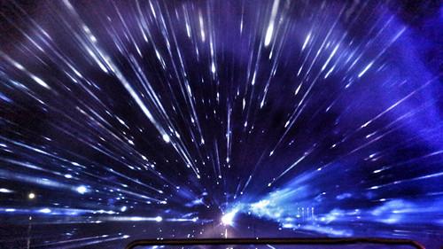 国庆出游好去处 崇明东平国家森林公园3公里灯光秀点亮