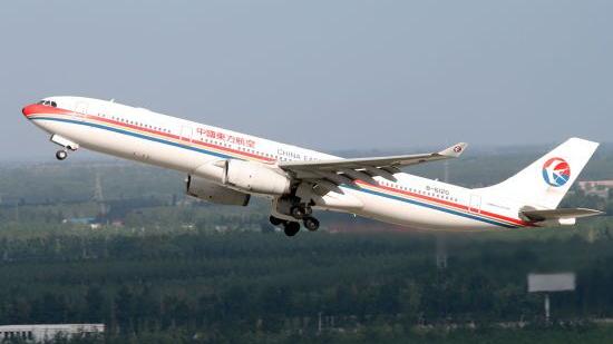 民航局公布虹桥机场10.11事件处理结果 13名领导干部被处分